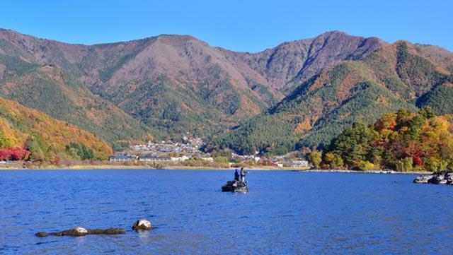 秋のバス釣り 実践攻略