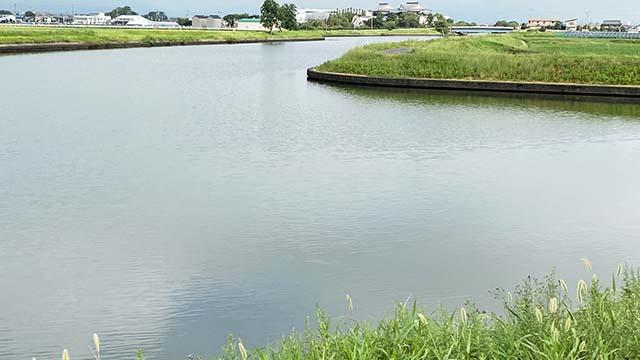 大江川 合流地点